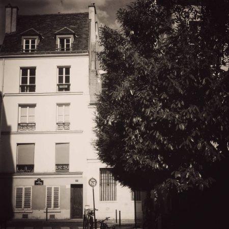 Rue Neuve-Sainte-Geneviève dans le roman, actuellement rue Tournefort.